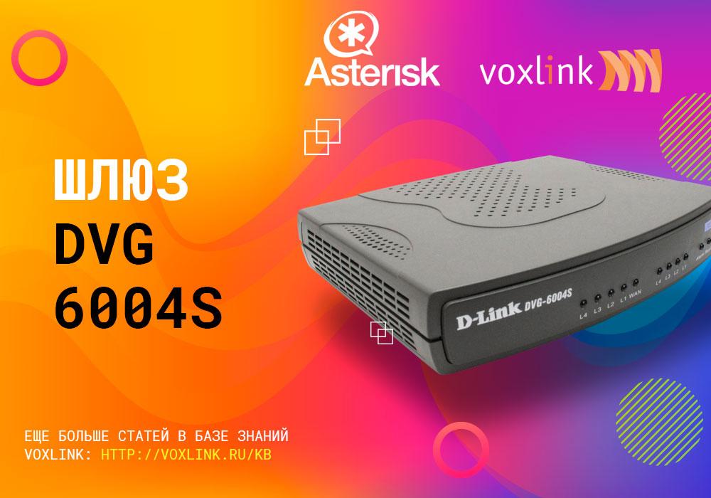 DVG 6004s