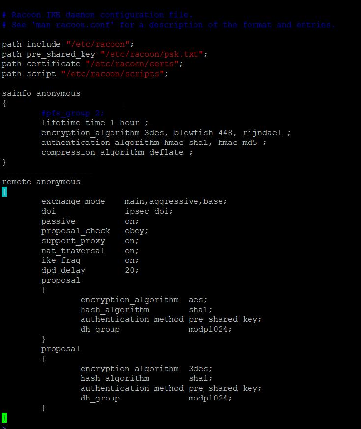 Конфигурационный файл racoon.conf