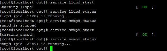 Запуск и проверка сервисов