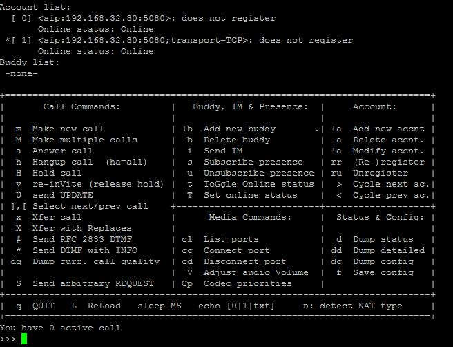 Pjsua пользовательский интерфейс